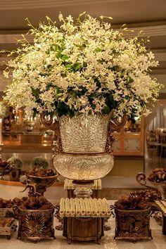 Fabulous !!! orchids!