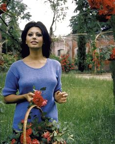 Alfred Eisenstaedt :Sophia Loren, Rome, 1964 Italian Women, Italian Beauty, Hollywood Star, Vintage Hollywood, Life Pictures, Best Funny Pictures, Carlo Ponti, 85th Birthday, Sophia Loren