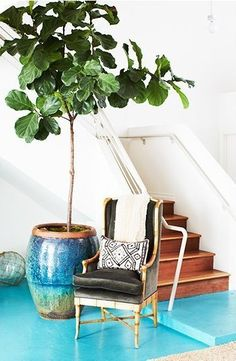 Stunning tree love the interplay of colours and the sea blue floors. See more feng shui decor tips at http://FengShui.About.com