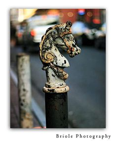 40 Off Sale  New Orleans Wall Art French Quarter 8x10 by Briole, $18.00