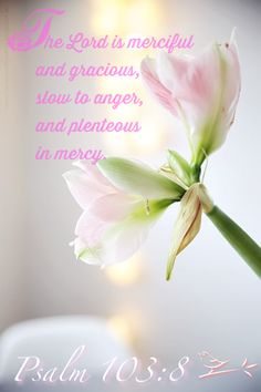 """""""The Lord is merciful and gracious, slow to anger . . . """" Psalm 103:8  #Scripture   #Bible"""