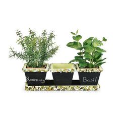 Herb Garden Planter (using Chalkboard Paint)
