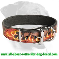 #Rottweiler Hand Painted Flamy #Leather #Collar $49.99 | www.all-about-rottweiler-dog-breed.com