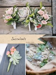 Perfect for a Rustic wedding! Succulents Wedding ~ Get To Know Your Wedding Flowers