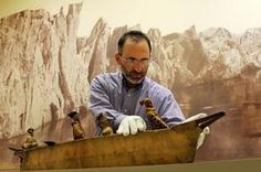 Michael Lapides of the New Bedford Whaling Museum adjusts a 19th century model of a Umiak (skin boat). Behind him is a photo mural of the Sermitsialik Glacier, taken during William Bradfords 1869 voyage to Greenland, part of the Arctic Visions - Away then Floats the Ice-Island exhibit at the museum.
