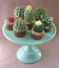 DIY House Plant Cupcakes -- I actually thought these were real!!!---I wouldn't have these around with kids, they might try to eat REAL cacti!  ouch