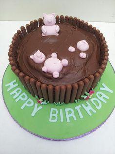 Pig in mud cake