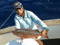 Snapper in Costarica 2014