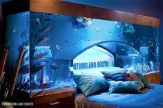 Giant Aquarium/bed