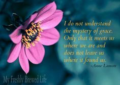 I do not understand the mystery of grace. Only that it meets us where we are and does not leave us where it found us. Anne Lamot @My Freshly Brewed Life