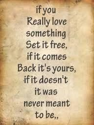 if you really love something set it free, if it comes back it's yours, if it doesn't it was never meant to be.