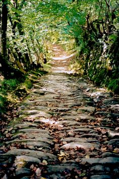 Tarr Steps, Exmoor - The Tarr Steps are a clapper bridge across the River Barle in the Exmoor National Park, Somerset. A typical clapper bridge construction, the bridge possibly dates to around 1000 BC. The stone slabs weigh up to 1-2 tons apiece.