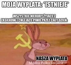 Avatar Ang, Polish Memes, Fun Facts, Jokes, Lol, Funny, Humor, Anime Meme, Bugs