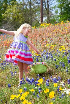 ~Spring in Texas: Bluebonnets ♥