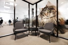 Corporate office designed by Metropolis arkitektur & design. Corporate Office Design, Eames, Dining Chairs, Lounge, Interior, Projects, Furniture, Home Decor, Airport Lounge