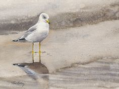 Reflection - watercolor on canvas by Toni Kelly
