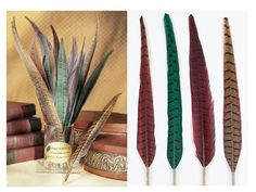 Pheasant  Feather Quill Pen with deluxe refillable ballpoint tips