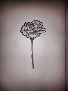 Carnation tattoo idea -birth month