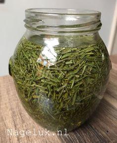 Rosemary Herb, Pickels, Spice Mixes, Kimchi, Chutney, Tricks, Vinegar, Health Tips, Herbalism