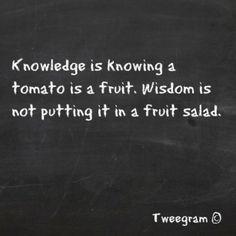 Tekst: geinig voor in de keuken. 'De tomaat is een populaire vrucht, afkomstig van de tomatenplant (Solanum lycopersicum, synoniem: Lycopersicon esculentum). De vrucht is culinair gezien een groente' (Wikipedia).