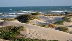 10 Best Beaches in TEXAS: Explore the Texas gulf coast with over 350 miles of coastline