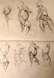 Resultado de imagen para անատոմիական drawing