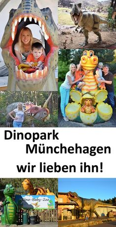 Dinopark Münchehagen – Erfahrungen und Video Who has another dinofan at home? We love the park – watch my video. Baby Zoo, Asia Travel, Travel Usa, Dino Park, Inspirational Quotes For Kids, Vacation Quotes, Les Continents, Beach Family Photos, Road Trip Hacks