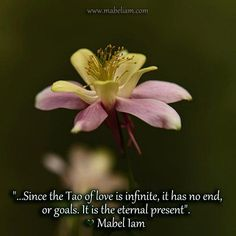 """""""...Since the Tao of love is infinite, it has no end, or goals. It is the eternal present"""".  ♥ Mabel Iam"""