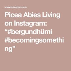"Picea Abies Living on Instagram: ""#bergundhümi #becomingsomething"""