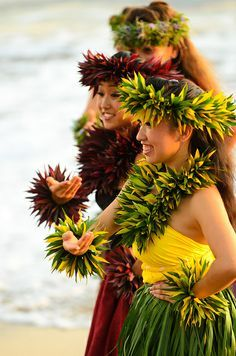 hula girl costume for adults - Google Search