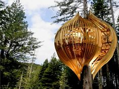 Finally! A treehouse that works *with* the tree instead of one that's a house attempting to sit within branches.  Elegant, simple design that adds to the tree's beauty.
