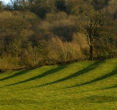 Shakespeare's Scenery: Ridge and Furrow at Edgehill