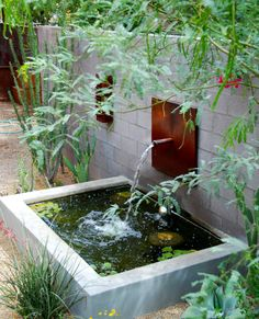 Raised pond // Steve Martino / on TTL Design