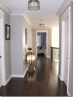 bm revere pewter... a nice soft gray for in the hallway
