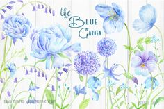 Wedding Clip Art Blue Garden - Watercolor blue peony, blue ranunculus, alliums, blue poppies & decorative elements for instant download by CornerCroft on Etsy