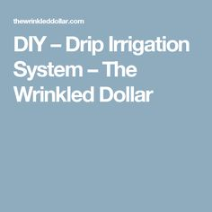 DIY – Drip Irrigation System – The Wrinkled Dollar
