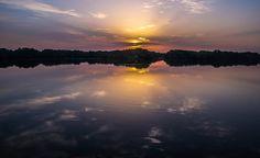 sunrise in the mangroves, abu dhabi
