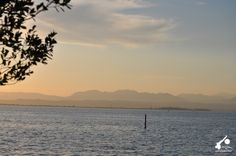 Foschie sul Lago di Garda! #LagodiGarda #LakeGarda #Gardasee #LacdeGarde #Gardameer #LagodeGarda
