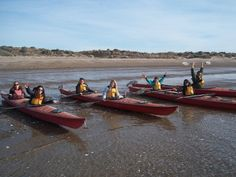 A navegar! http://www.intercoined.com/content/spanish-courses-patagonia-learn-spanish-puerto-madryn