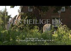Den Heilige Eik by Raimke Groothuizen. Al 750 jaar staat in Den Hout, vlakbij Oosterhout, een eikenboom. Deze boom heeft veel meegemaakt en is het onderwerp in veel verhalen. Maar hoeveel van deze verhalen zijn tegenwoordig nog bekend?