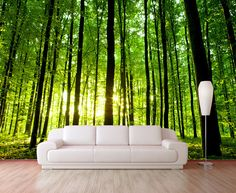 Sunny forest wallpaper, repositionable peel & stick wall paper, wall covering