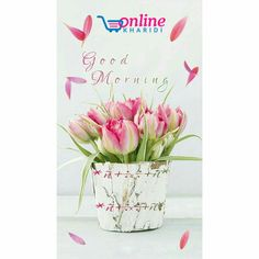 Toys Online, Online Gifts, Chocolate Delivery, Send Flowers Online, Cake Online, Cake Delivery, Flowers Delivered, Good Morning, Place Card Holders