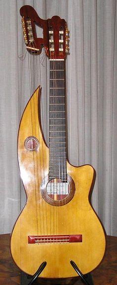 Gianni Pedrini -acoustic guitar harp