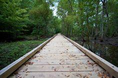 Nature walk at Cochran Shoals park along the Chattahoochee River in Atlanta