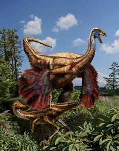 Este fabuloso dinossauro coberto de penas. | 12 criaturas pré-históricas esquisitas que lhe deixarão aliviado de viver hoje em dia
