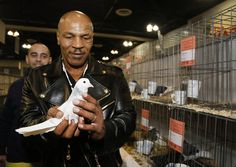 Did you know? Mike Tyson is a big fan of pigeons. (AP photo)