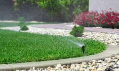 When it comes to a healthy lawn and garden, the key is to water it consistently.