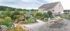 Sarah's Vineyard  Winery & Art Gallery   1204 W. Steels Corners Road   Cuyahoga Falls, Ohio 44223
