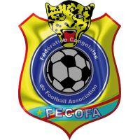 dr congo football logo - Google Search