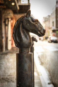 New Orleans Hitching Post  Travel Photography